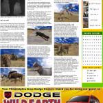 Wild Earth souvenir printout